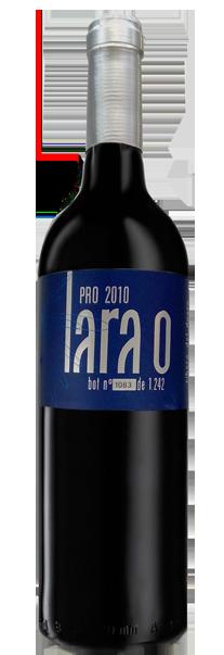 Lara-o-pro-web